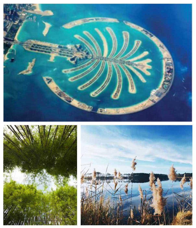 Ý tưởng thiết kế biệt thự đảo Ecopark Grand The Island