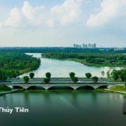 Cầu Thủy Tiên - Ecopark
